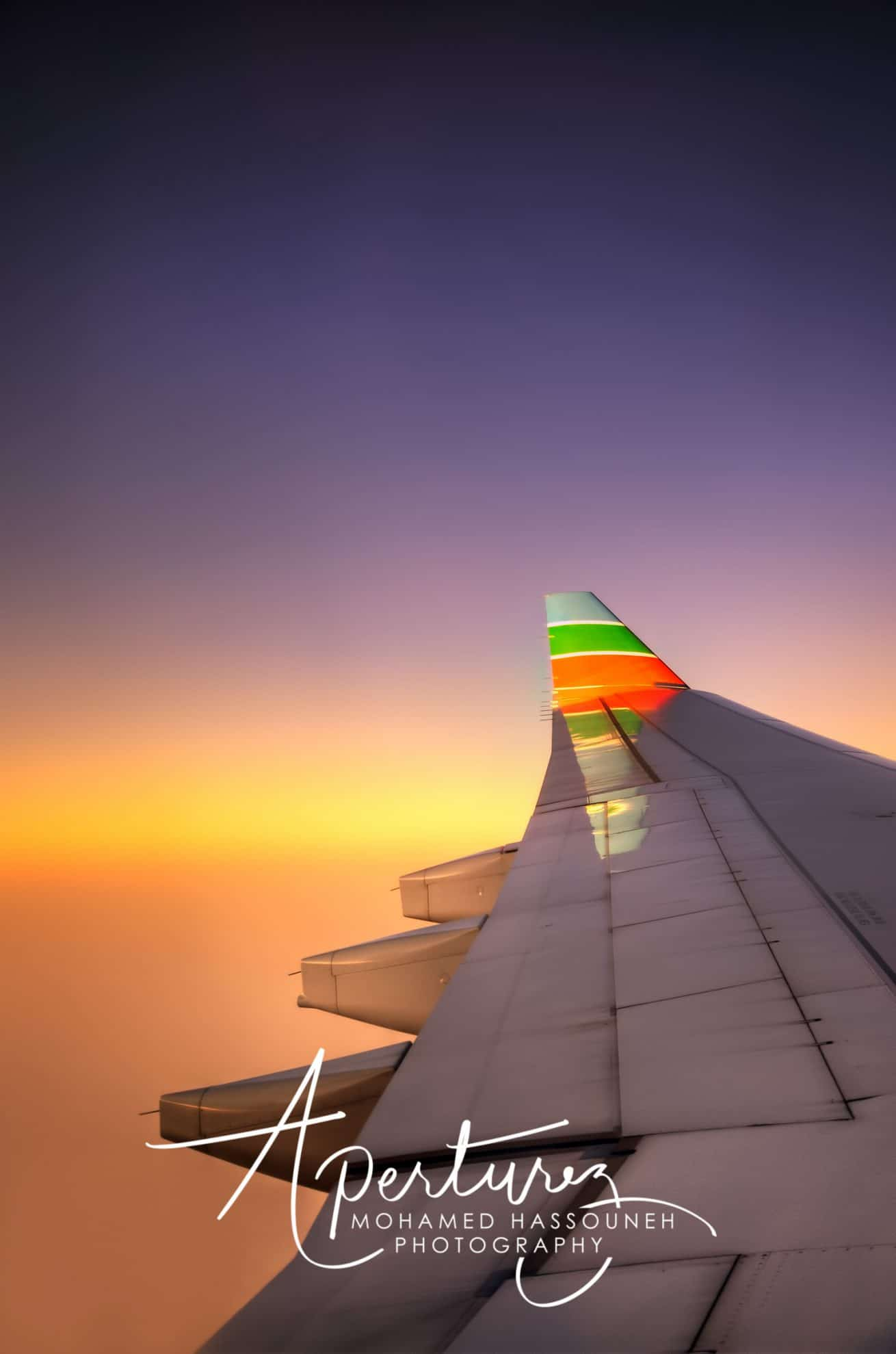 The Wings at Sunset