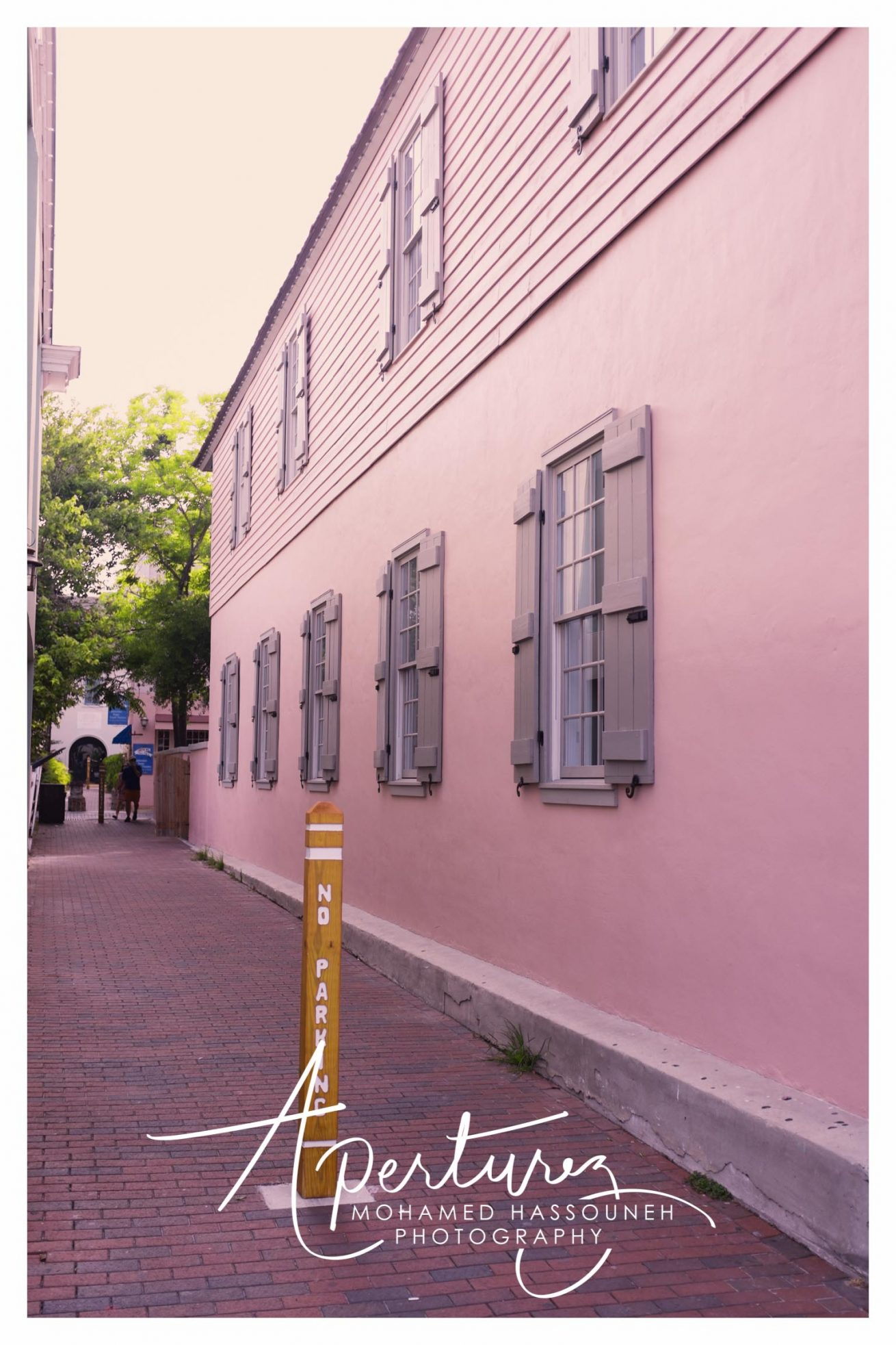 The Pink Alley